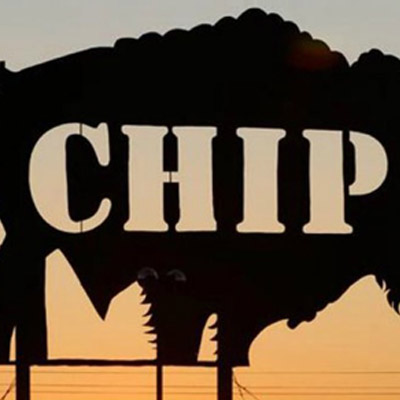 buffalo chip sign